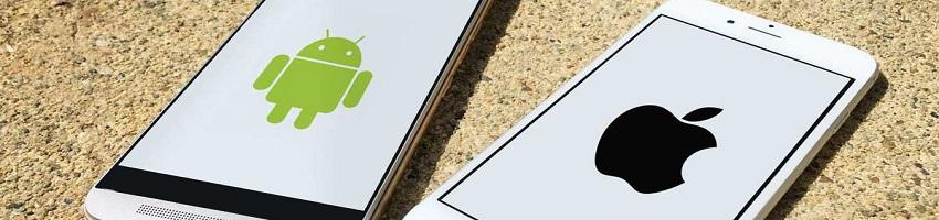 Как подключить СБП на айфоне и андроиде